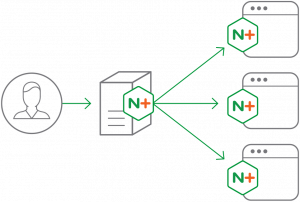 nginx-plus-main-diagram-964x6482x-1