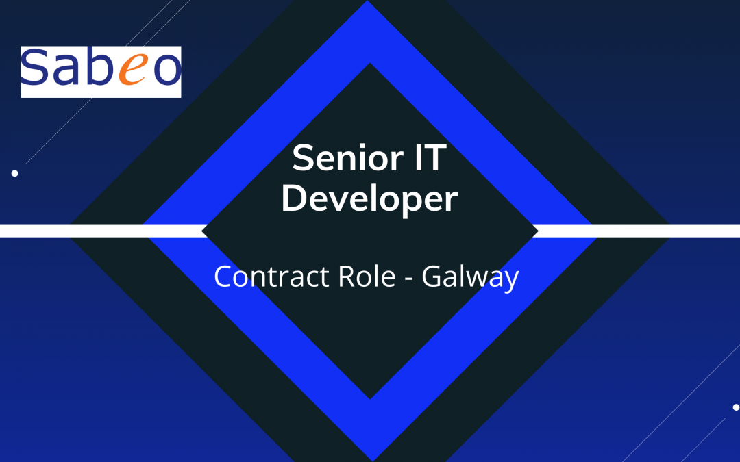 Senior IT Developer